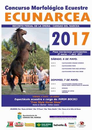 EL CABALLO ASTURCÓN (Equus caballus)