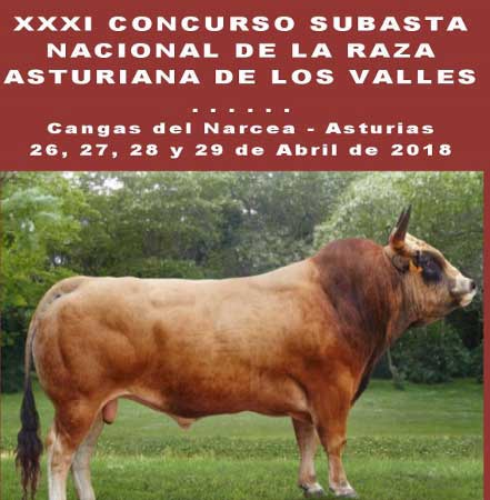 palabras en bable más empleadas en asturias.